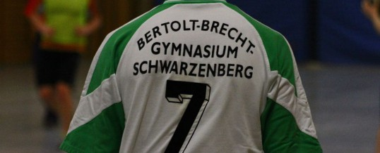 Handballturnier der ehemaligen Schüler des Brecht Gymnasiums 2012