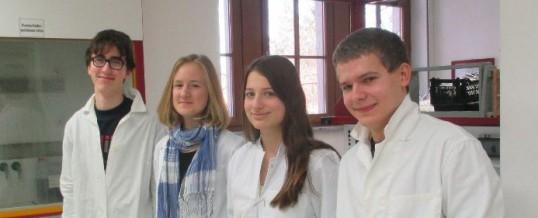 Chemiewettbewerb-Stöckardt