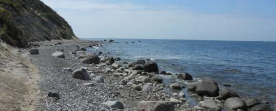 Wochenexkursion des Chemie- und Physikkurses an die Ostsee