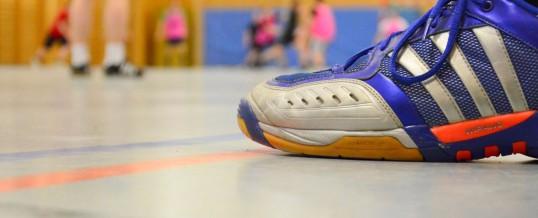 Handballturnier der ehemaligen Schüler 2016