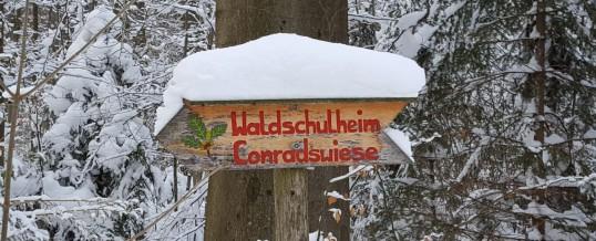 Kleine Forscher im Winterwald