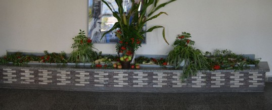 Hausmeister gestaltet Schulhaus