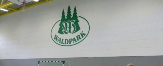 Abenteuer Klassenfindung für die neuen Fünfer im Waldpark Grünheide